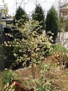 200806111.jpg